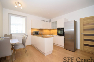Nice modern furnished 1 bedroom apartment