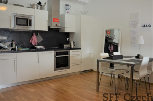 Korunni modern flat to rent Prague 2 Vinohrady