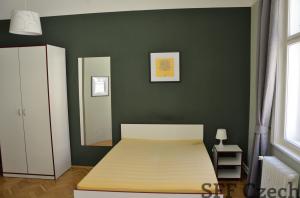 Large room to rent center of Prague next Vltava