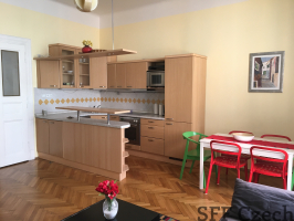 Furnished apartment to rent in center of Prague