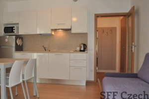 Modern  furnished 1 bedroom apartment Karlin