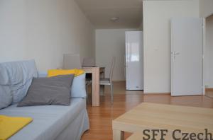 Nice 2 bedroom apartment in Prague 3 close center