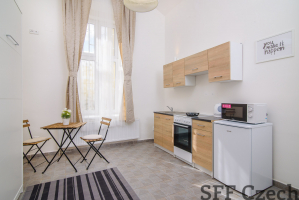 Fully furnished studio to rent in Prague 4