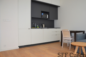 Prague 6 fully furnished nice modern studio