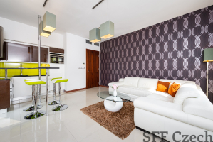 Furnished apartment Americka close to Namesti miru