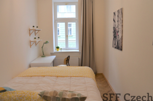 Nice new modern room to rent in Prague 3