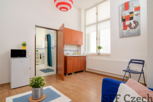 Fully furnished studio to rent in Prague Nusle