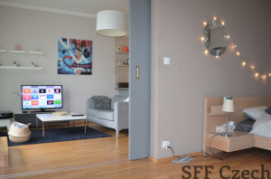 Nice modern furnished one bedroom apartment