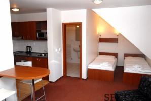 Furnished apartment close Dejvicka Prague 6 Suchdol