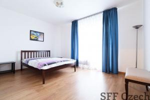 Nice modern 1 bedroom apartment Prague 10