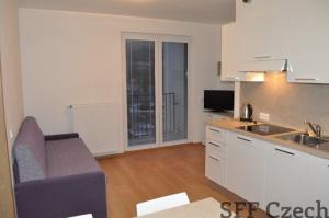 Modern 1 bedroom furnished flat Karlin Prague