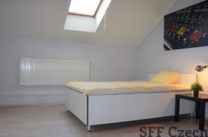 Cimburkova, fully furnished attic students apartment for rent