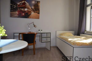 Furnished studio to rent in Prague 3 close to center