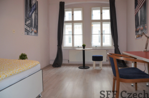 Furnished student 1 bedroom flat to rent close to center Prague 3