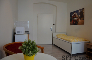 Furnished studio to rent in Prague 3 close center