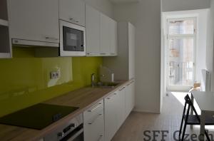 Furnished modern 3 bedroom apartment Prague 2