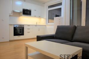 Modern 1 bedroom apartment metro Nove Butovice
