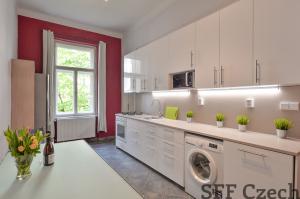 3+1 apartment to rent Vinohrady close center