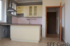 Large 3+1 apartment in Horomerice Prague