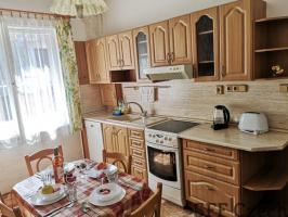 Fully furnished flat to rent Krakovska Prague 1