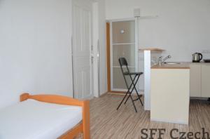 Cheap studio to rent in Prague 9 Kobylisy