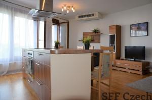 1 bedroom furnished apartment to rent Vodičkova Prague 1