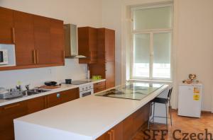 Large 3+1 apartment I.P.Pavlova Prague 2