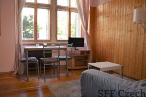 Close to center apartment 1+1 Prague 10 Bulharska