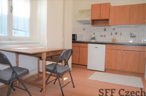 New furnished studio Prague 2 Šafarikova