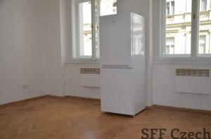 Nice small studio to rent in I.P.Pavlova Koubkova