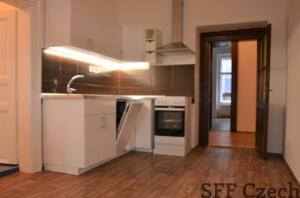 Large 3+1 apartment in center of Prague V Jame