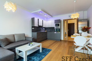 Luxury modern furnished apartment Jindricha Plachty