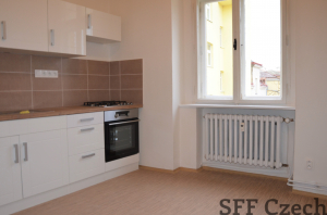 Large 3+1 apartment in center of Prague Mezibranska