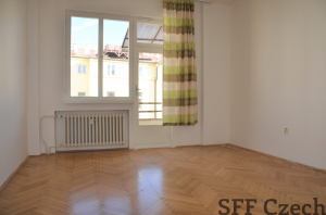 1+1 partly furnished apartment Americka