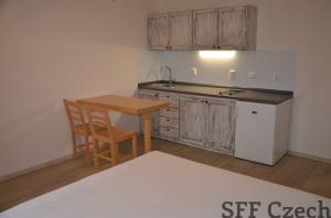 Furnished cozy studio for rent, Prague 2 - Nové město