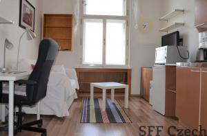 Furnished studio to rent, Praha 2 - Nové město, close to center