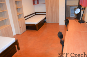 Furnished private double room with bathroom for rent Prague 3
