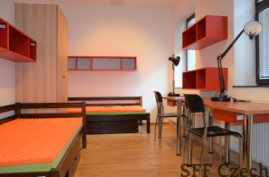 Single bed in a shared room for rent Prague 3 near the center