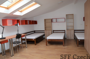 Triple room with kitchen and bathroom for rent Prague 3 near the metro