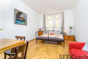 Furnished apartment to rent close to náměstí Míru Prague 2 - Vinohrady