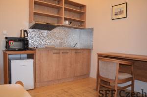 Furnished studio flat to rent Prague 2, Palackého náměstí