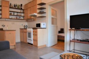 Zařízený byt 2+kk k pronájmu Praha 2 - Vyšehrad blízko centra
